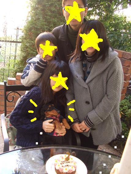 シナモン 2歳.JPG