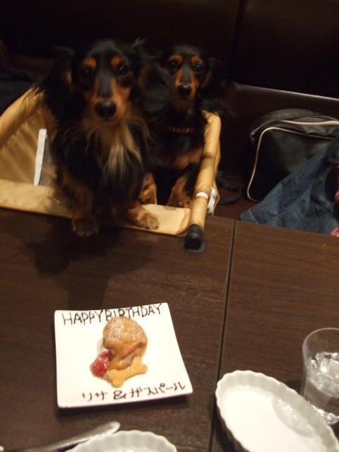 リサ&ガスパール 2歳.JPG