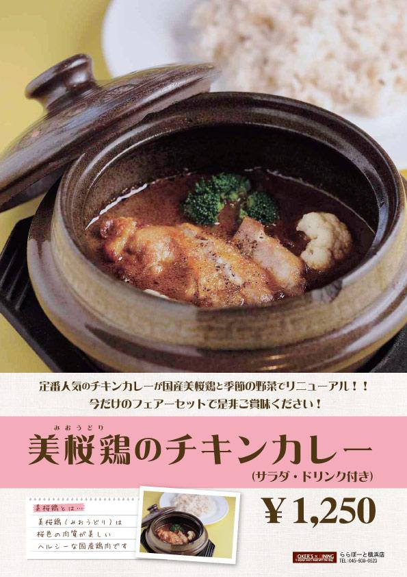 美桜鶏のチキンカレー.jpg